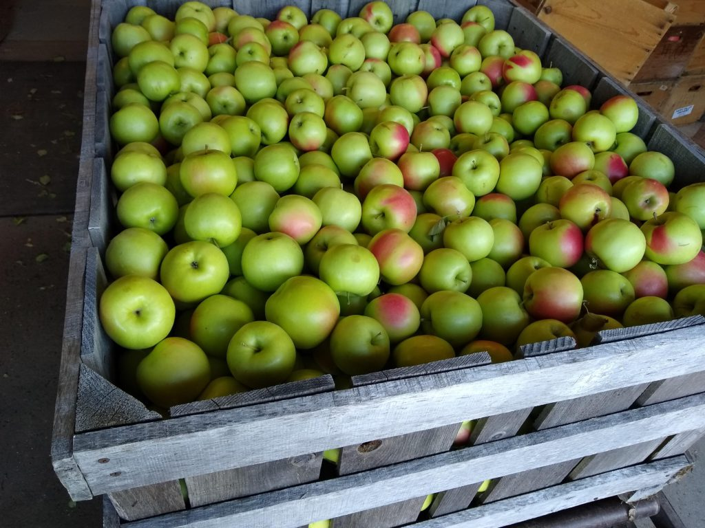 apples in crate